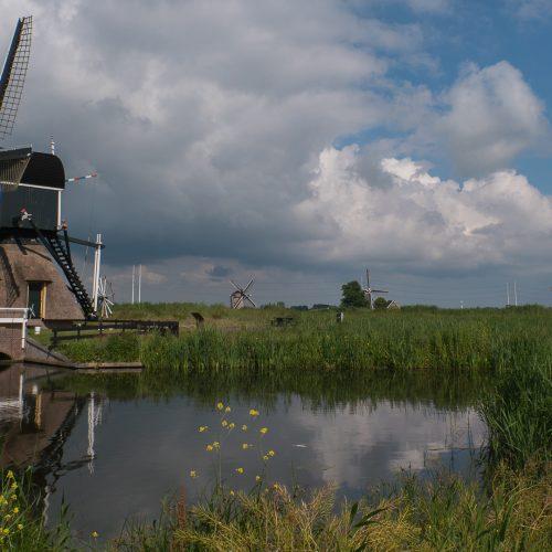 Daquerre Polder molen
